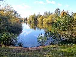 Ryton Pools Country Park