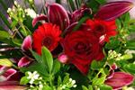 Ben N Zaks Florists